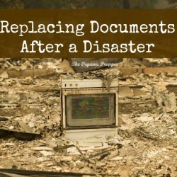 Replacing-Documents-After-a-Disaster