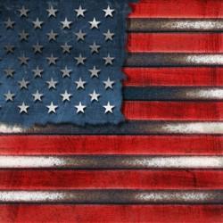 america-collapse