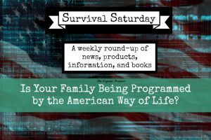 Is-Your-Family-Being-Programmed-by-the-American-Way-of-Life