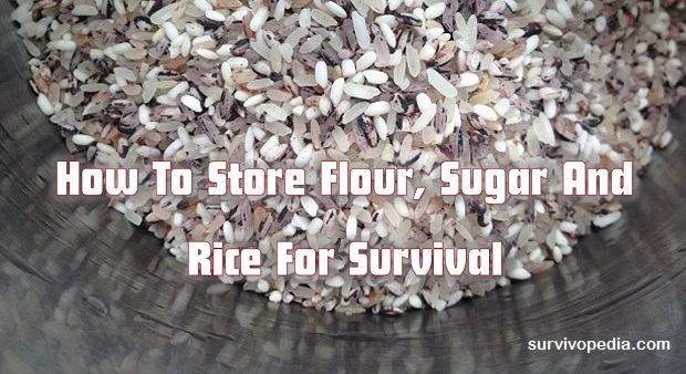 Survivopedia-store-rice