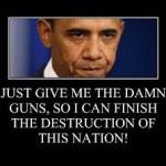 Obama-On-Guns