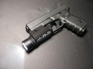 light-on-gun-300x225