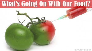 BIG-GMOs