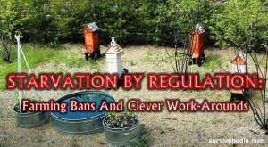 SVP-farming-ban